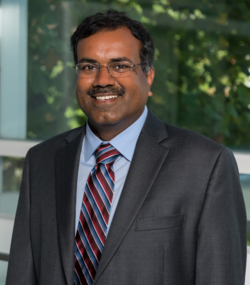 Headshot of Srinivas Aluru in a suit.